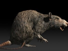 after-reset-rpg-rat-01
